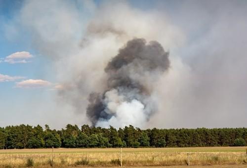 ¿Qué franja debemos mantener limpia de árboles y maleza respecto a las viviendas por prevención de incendios en Galicia?