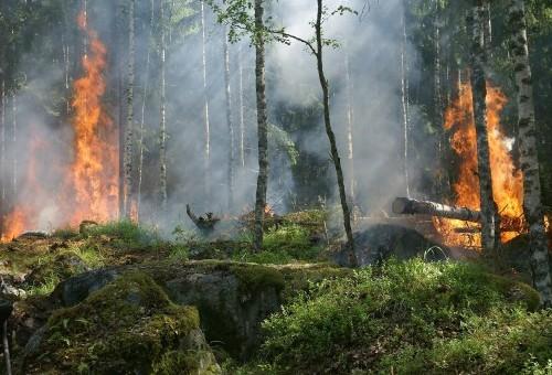 Campaña prevención de incendios 2021